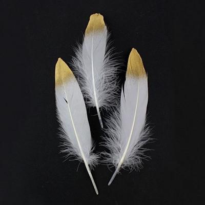 Перья Белые с золотым кончиком 15-19 см