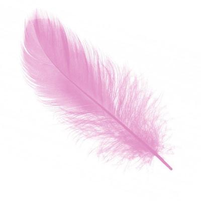 Перья Нежно-розовые