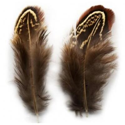 Перья фазана Натуральный цвет 10 см