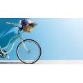 Велосипеды и комплектующие