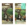 Семена газонных трав и сидератов