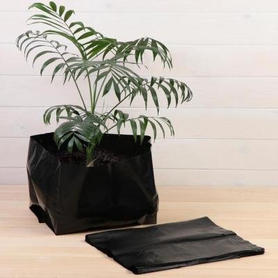 Пакет для рассады, 24 л, 32 × 40 см, толщина 120 мкм, с перфорацией, чёрный