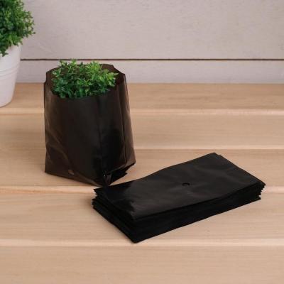 Пакет для рассады, 0,3 л, 13 × 7 см, с перфорацией, толщина 50 мкм, чёрный