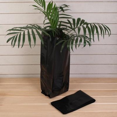 Пакет для рассады, 10 л, 15 × 52 см, толщина 120 мкм, с перфорацией, чёрный