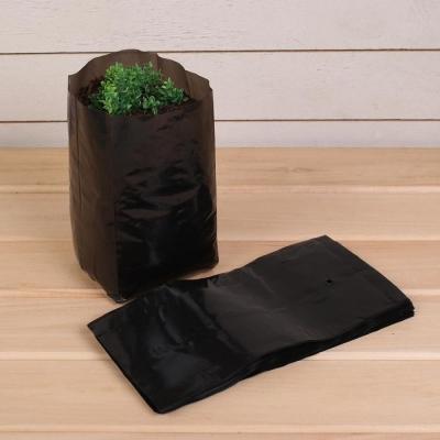 Пакет для рассады, 2 л, 10 × 25 см, толщина 60 мкм, с перфорацией, чёрный