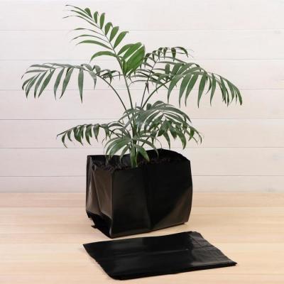 Пакет для рассады, 16 л, 28 × 35 см, толщина 120 мкм, с перфорацией, чёрный