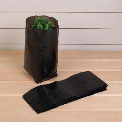 Пакет для рассады, 3 л, 11 × 30 см, толщина 60 мкм, с перфорацией, чёрный