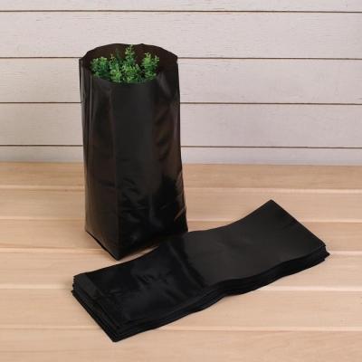Пакет для рассады, 5 л, 12 × 35 см, толщина 100 мкм, с перфорацией, чёрный