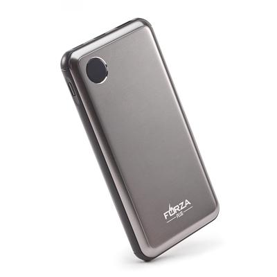 FORZA Аккумулятор мобильный, 10000 мАч, металл, USB, Type-C, 2А, цифровой индикатор заряда