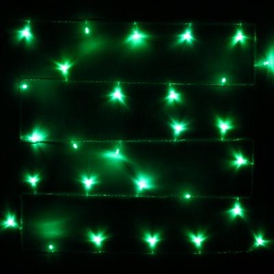 Гирлянда для дома 2,5м 24 лампы LED прозрач.пров.,8 реж, IP-20, Зелёный