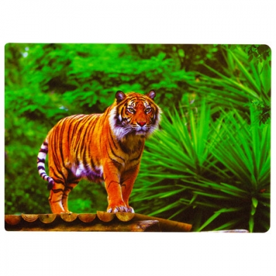 """Настольное покрытие для письма и творчества BRAUBERG, размер А4, пластик, """"Тигр"""", 227255"""