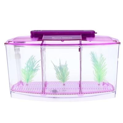 Аквариум-отсадник трехсекционный с подсветкой и светящимися растениями, фиолетовый